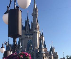 castle, disney, and flower image