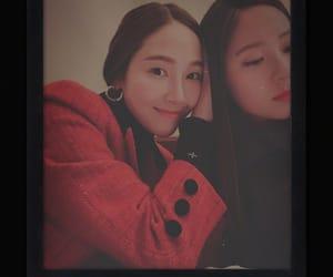 jessica, korean girl, and rose image