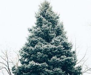 christmas, cold, and february image