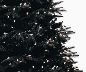 christmas, christmas tree, and february image