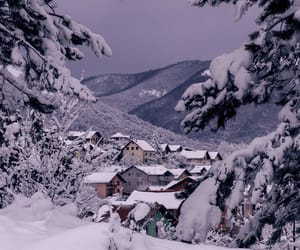 Bosnia, cold, and forest image