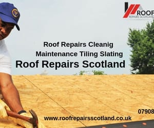 roof repairs and roof cleaning image
