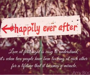 happily ever after, love, and relationships image
