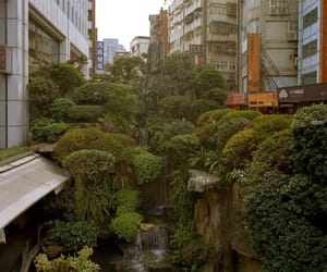 nature, city, and green image