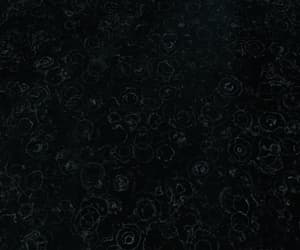 dark, fallout, and dark water image