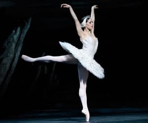 ballet, classy, and dance image