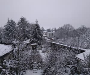 garden, snow, and winter image