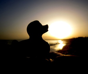 beach, duck, and rubber duck image