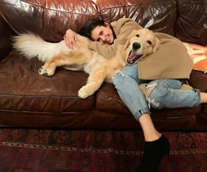 dog, actress, and beauty image