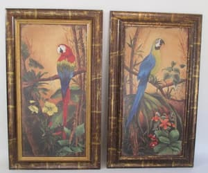 etsy, blue and gold macaw, and blue parrot image