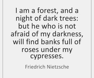expression, friedrich nietzsche, and quote image