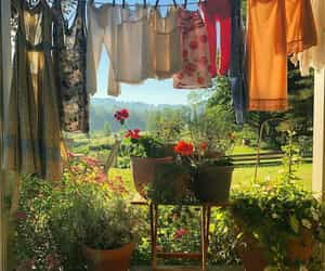 flowers, clothes, and sunshine image