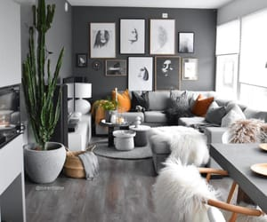 grey, white, and colors image