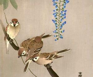 shoson ohara and sparrows on wisteria image