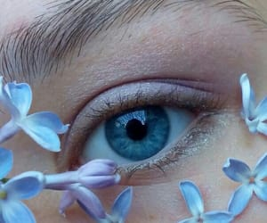 beauty, eye, and flowers image