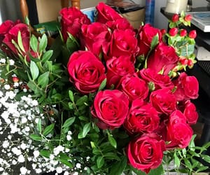 flowers, valentines, and roses image