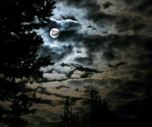 cloudy sky, moon, and night sky image