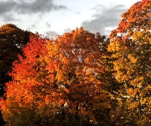 autumn, clouds, and colorful image