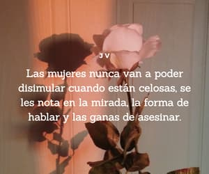chicas, frases, and women image