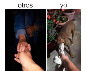 memes, momos, and solteros image