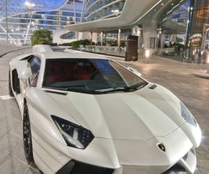 cars, luxury, and maddie image