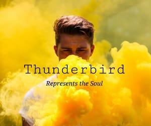 hogwarts, harry potter, and thunder bird image