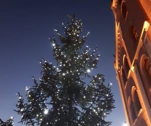 building, night, and christmas image