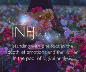 emotions, introvert, and infj image