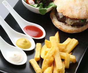 burger, fast food, and fries image