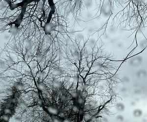 raining, winter, and Lyrics image