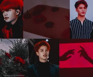 aesthetic, wallpaper, and taeil image