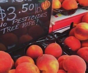 aesthetic, food, and orange image
