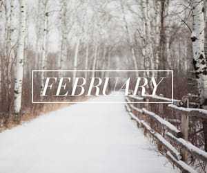 february, snow, and white image