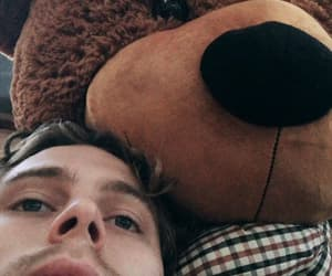 mood, michael clifford, and teddy bear image