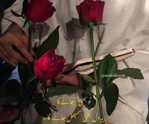 pakistan, poetry, and pakistani image