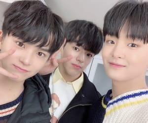 asahi, boys, and icons image