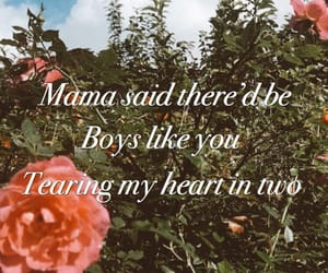 aesthetic, boys, and flowers image