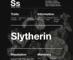 draco malfoy, hogwarts, and slytherin aesthetic image