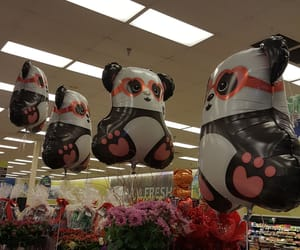 heart glasses, pandas, and ballons image