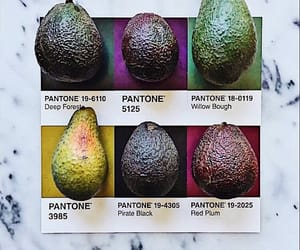 art, pantone, and guacamole image
