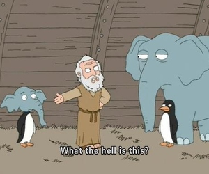 funny, elephant, and penguin image