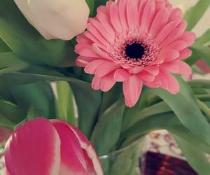 bouquet, decoration, and diy image