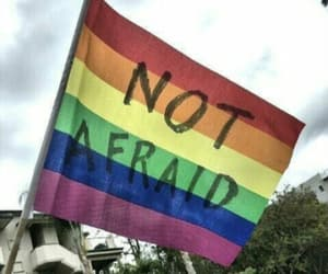 afraid, flag, and lgbtq image