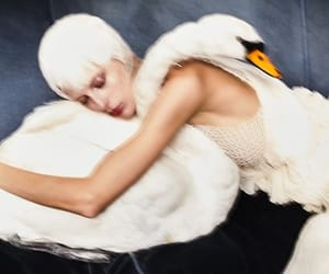 art, fashion, and Swan image