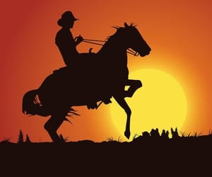 atardecer, desierto, and caballo image