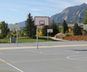 basket, Basketball, and nature image