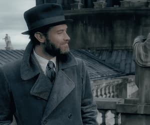 albus dumbledore, jude law, and gif image
