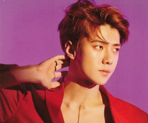 exo, kpop, and sehun image