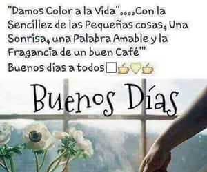 cafe, coffee, and vida image