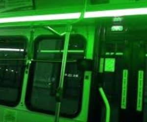 brightness, green, and light image